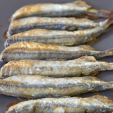 Fried capelin
