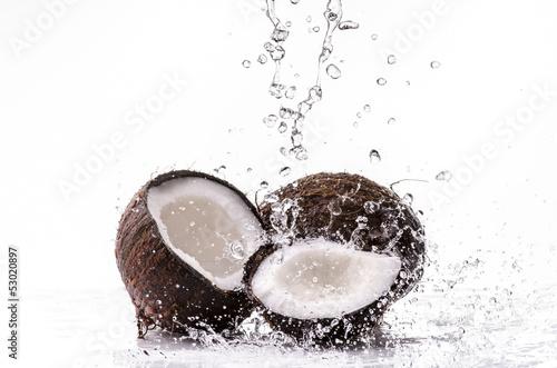 noce di cocco splash © luigi giordano