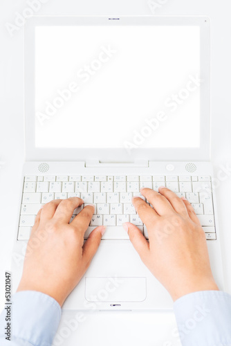 Female hands with laptop with copy space
