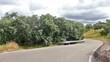 Carretera de campo con curvas