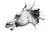 Horse head watercolor grunge illustration