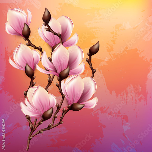 Magnolia branch watercolor illustration