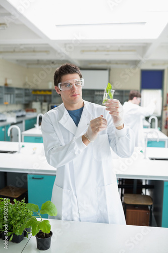 Student holding up beaker with seedling in it