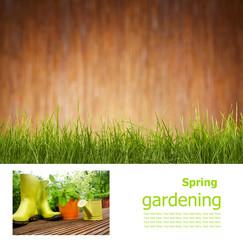 Gardening  board concept