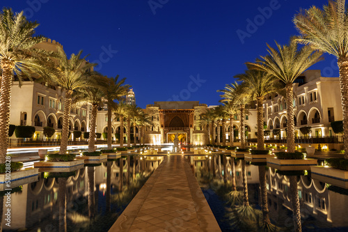 209- palm trees dubai - 53028828