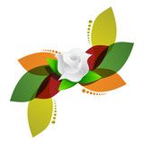 white rose over color leaves illustration design