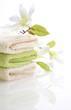 Wellness Grün Magnolie