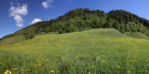 Steiermark im Frühling