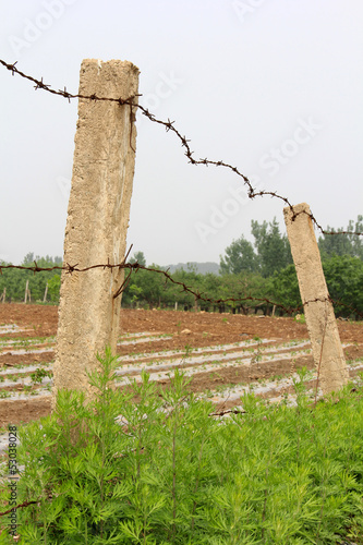 Cement column and barbed wire in the fields