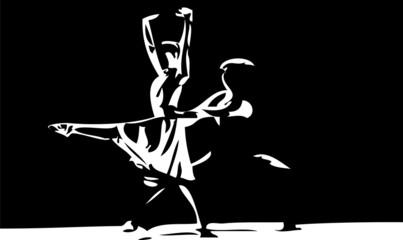 ballerini classici