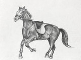 Pencil Drawing of a Running Horse