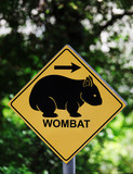 Wombat sign with arrow in forest