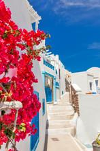 Griechenland Santorini Insel in Kykladen, traditionellen Sehenswürdigkeiten der Farbe