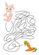 il coniglio e le carote