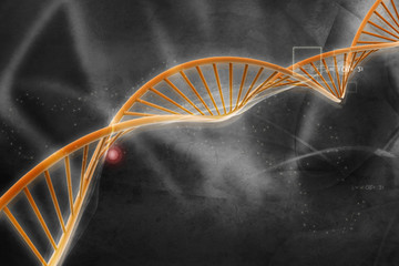 Digital illustration of  DNA .