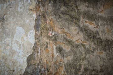 Background texture of a grungy cement wall