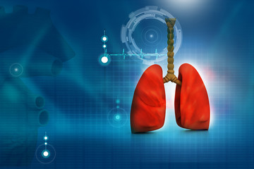 Human lungs in abstract digital design.