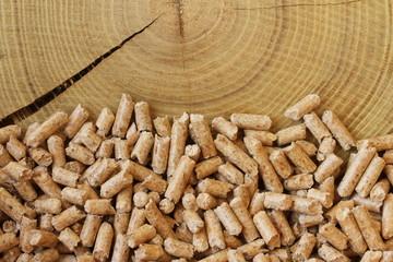 Holzpellets Baum