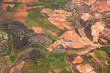 Aerial view of rural area / green fields and olive plantations /