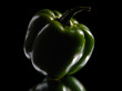 Green sweet pepper on a black background