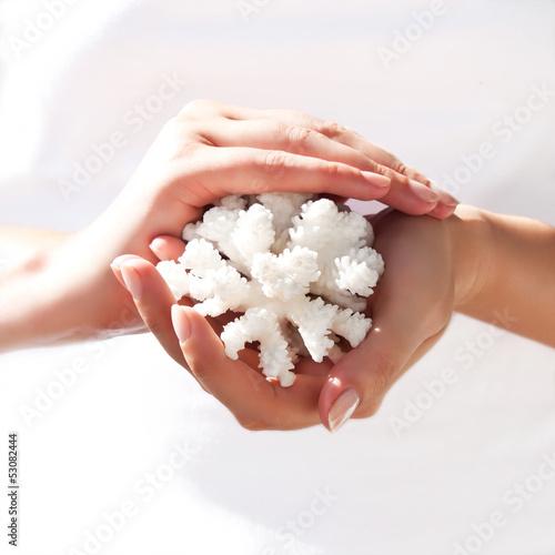 Белый коралл в нежных женских руках