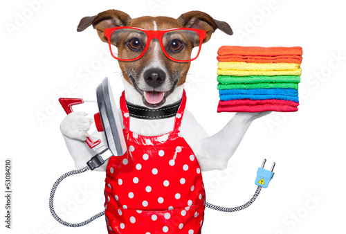 Poster housewife dog