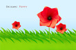 Green field with origami poppy