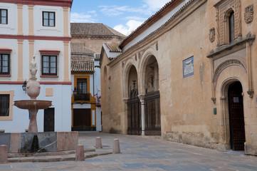 Potro square and Museum of Fine Arts, Cordoba (Spain)