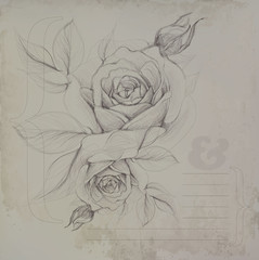 Paper card with roses / Vintage template to further customize