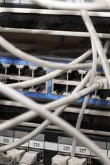 Network Cables Connected to Server