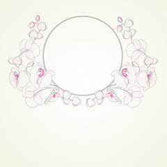 Orchid curly frame.