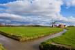 charming Dutch windmill on green grassland