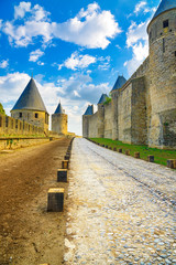 Carcassonne Cite, fortified town on sunset. Unesco site, France