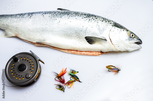 Salmon with flyfishing reel and flies