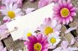 Liebe Grüße: Gutschein mit Margeriten und Gänseblümchen