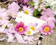 Liebe Grüße: Gutschein mit Margeriten und Kirschblüten