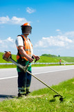 Road landscapers cutting grass using string lawn trimmers