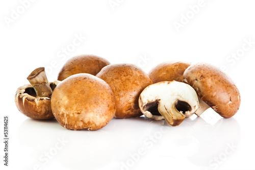 Fresh mushroom champignon isolated on white background .  fresh