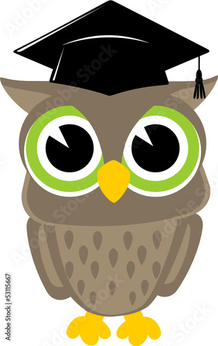 owl cartoon graduation