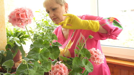 Mature woman caring for flowers in pots