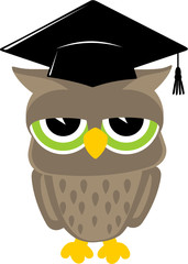 relaxed owl graduation