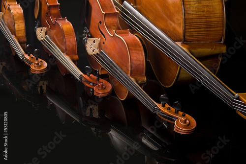 Two Violins, Viola and Cello
