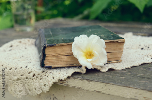 Old book and dog rose flower