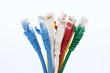 colorful UTP ethernet cables LAN