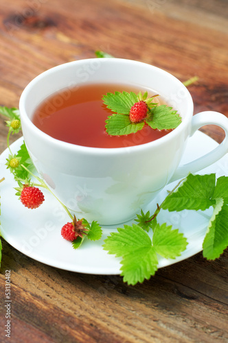 Tea (Fragaria vesca)