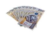Polish money salary isolated poster