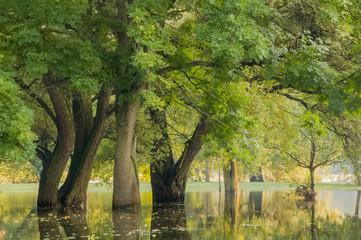 Landstrich unter Wasser, Hochwasser