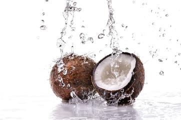 noce di cocco splash