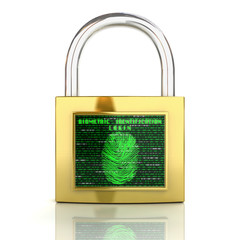 Biometric identification concept