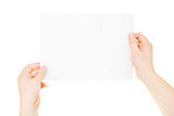 Hands holding trifold empty brochure, slightly folded, isolated poster